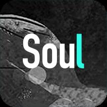 华为应用市场_Soul